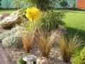 zahrada_010-jpg_440